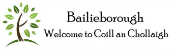 bailieborough.com